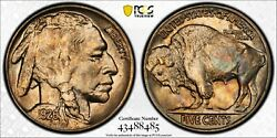 1926 Buffalo Nickel Pcgs Ms 64 Rolling Silvery Luster Infused With Reddish Gold