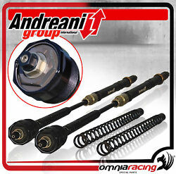 Andreani Factory Closed Pressurised Cartridges Kit For Fork Bmw Hp4 2013