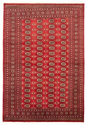 Hand-knotted 6and0397 X 9and0397 Finest Peshawar Bokhara Bordered Traditional Wool Rug
