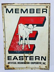 Vintage Metal Sign Member Eastern Artificial Insemination Cooperative Dairy Cow