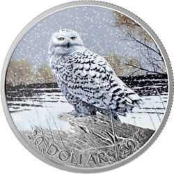 2016 And039snowy Owland039 Colorized Proof 20 Silver Coin 1oz .9999 Fine 17493 Ooak