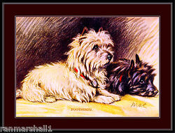 English Picture Print Cairn Terrier Puppy Dog Dogs Puppies Vintage Poster Art