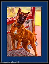 English Print Boxer Dog Dogs Puppy Puppies Vintage Poster Art Picture w border