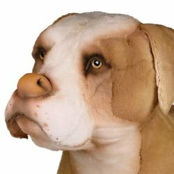Pit Bull By Piutre Hand Made In Italy Plush Stuffed Animal Nwt