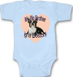 My Big Bother is a Boston Baby Bodysuit Cute New Gift Choose Size amp; Color