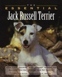 The Essential Jack Russell Terrier