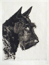 1930 MORGAN DENNIS Scottish Terrier Etching SCOTSHOME SURPRISE Scottie SIGNED NR
