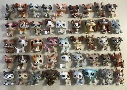 🐶Littlest Pet Shop🐶 AMAZING DOG LOT 45 Dogs ✨RARES!!!✨Great Variety✨MUST SEE