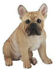 Large French Bulldog Statue With Glass Eyes 15.75