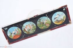 ✅ Magic Lantern Projection, Projector Slide Glass 'where Do Children Come From'
