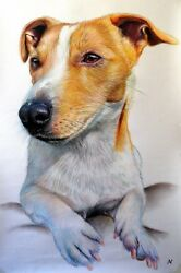 Ritratto portrait of JACK RUSSELL (dog) - Colored pencils cm. 50 x 70