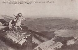 PROPOSED BUFFALO BILL MONUMENT WILD CAT POINT COLORADO POST CARD