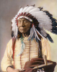 Chief Red Cloud Native American Sioux Indian 1897 11x14 Hand Color Tinted Photo