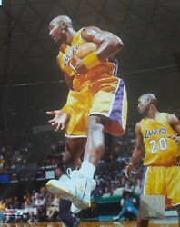 Karl Malone Los Angeles Lakers 8x10 Action Photo Gold Uniform