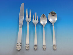 Northern Lights By International Sterling Silver Flatware Set Service 30 Pieces