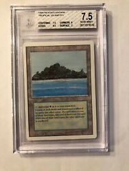 Tropical Island Dual Land Revised Bgs 7.5 Mtg Nmint+ 7.5/8.5/9/7 Rg 4rcards
