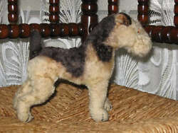 Antique Steiff Terry Airedale Terrier 13220 Mohair Working Squeaker 1950 1957