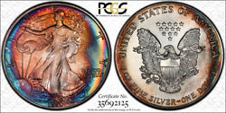 1990 American Eagle Silver 1-ounce Amazing Toning 1 - Pcgs Ms68 -