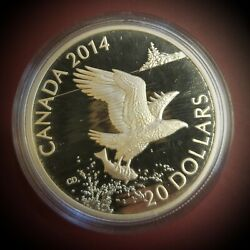 2014 20 Fine Silver Coin The Bald Eagle Royal Canadian Mint