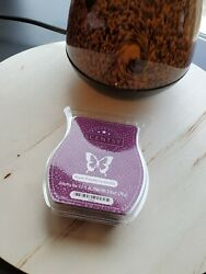 Your choice Pack of SCENTSY Bars New Bring Back My Bar Retired