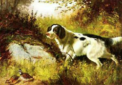 Art Wall Animal Dog And Quail Handpainted Arthur Tait Oil Painting Repro Canvas