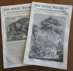 2 The Penny Magazines No. 147 And No. 148 1834 Bison All-spice Tree Indian Chief