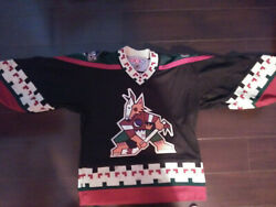 Authentic Nhl Ccm Phoenix Coyotee Jersey Boys S/m Circa Early 2000s