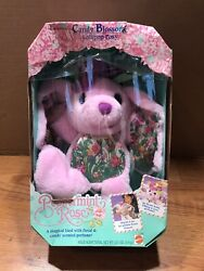 Vintage Mattel 1992 Peppermint Rose Candy Blossoms Lollipop Posy Box Damage See