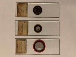 Lot Of 3 Antique Microscope Slides Gold And Silver Late 1800and039s