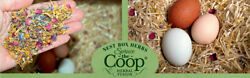 The Chicken Chick#x27;s Spruce the Coop Herbal Fusion Nest Box Herbs 5oz 16oz