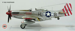 Pro Built Boeing P-51d Mustang 1/48 Scale Model Paint And Weathered