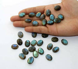 Natural Labradorite Oval Cabochon Loose Gemstone Size 12x16mm To 18x25mm Aaa Lot
