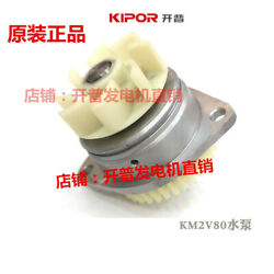 Km2v80 For Cape 10kw Water-cooled Two-cylinder Engine Kde12sta/3 Water Pump Zx