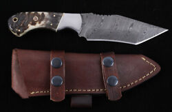 Custom Tanto Hunting Knife With Rams Horn Handles Montana Territory Knives M T