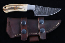 Stag Antler Hunting And Skinning Knife Montana Territory Knives M T