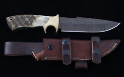 Montana Territory Knives Damascus Drop Point Hunting Knife Rams Horn Handles