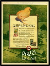 Prattand039s Baby Chicken Food New Metal Sign Large Size 12 X 16