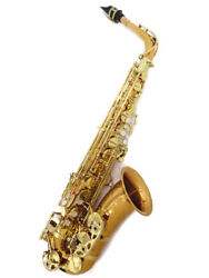 Yanagisawa A-902 Alto Saxophone Wind Instrument Made In Japan With Hard Case