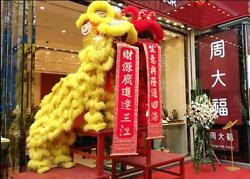 Lion Dance Mascot Costume Natural Wool Southern Lion For Two Adult Party Gift Us