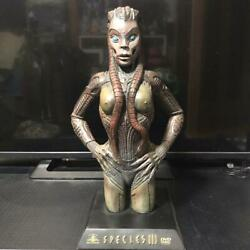 Speedy's Trilogy Sarah Statue Dvd Benefits Limited To 2000 Bodies Novelty
