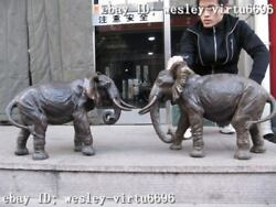 Chinese Pure Bronze Two Peace Lucky Africa Spouse Elephant Statue Pair
