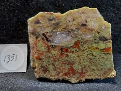 Rare Stunning Agua Nueva Vein Agate For Cabbing/collecting Amazing Colors