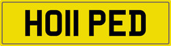 Hope D Theme Number Plate Ho11 Ped Registration With All Fees Included Hopes Reg
