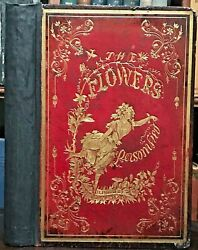 1849 Flowers Personified -modern Botany Flower Fairies Maidens Illustrated