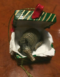 Brand New Conversation Concepts Armadillo In Green Gift Box Christmas Ornament