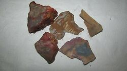 Lot Rough Slabs Lapidary Old Stock Picture Jasper