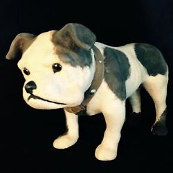 Antique Large German Bulldog Candy Container