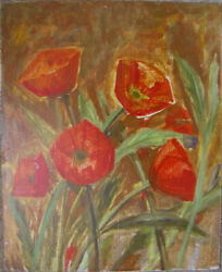 Poppy Red Flowers Plant Brown Background Blossoms Seeds Grain Unreif Antique