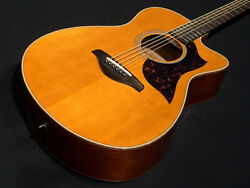 Yamaha Ac1m Vn Vintage Natural Preamplifier Built-in Electric Acoustic Guitar