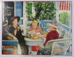 Sunsout Puzzle 300 Pieces Large Pieces The Fly By Susan Brabeau Old Ladies